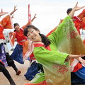 Photos: 京炎 そでふれ!彩京前線さん