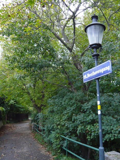 ベートーベンの散歩道