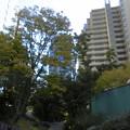 Photos: 大崎駅_ThinkPark-06