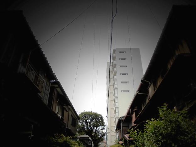 しながわ百景_北品川の古い民家の家並み(界隈)-06