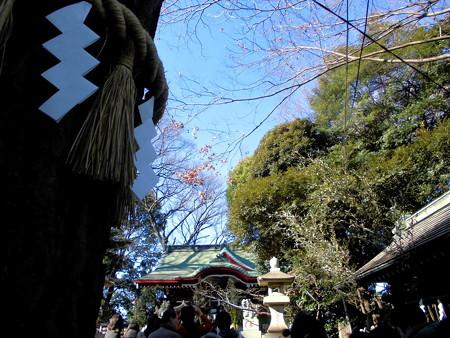 駒繋神社_2017 元日-02 行列