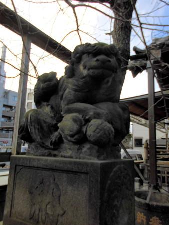 東品川_利田神社(かがたじんじゃ)-05b狛犬(吽)