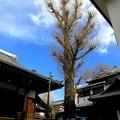写真: 日夜山正徳寺-04