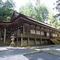 Photos: 山王院