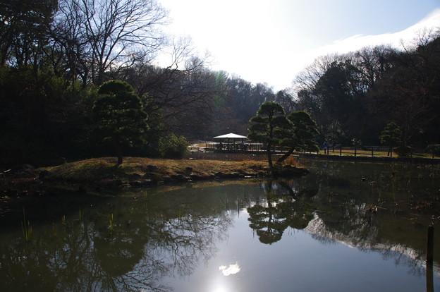 久良岐公園の大池