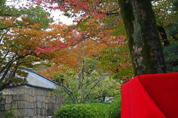硝煙蔵と紅葉