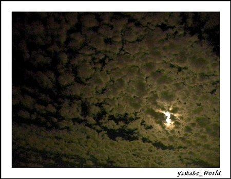 夜のウロコ雲