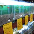 Photos: 2010 06/07 プチファームO2 004
