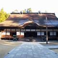 写真: 高野山紅葉21