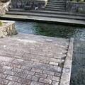 写真: 針江の生水10