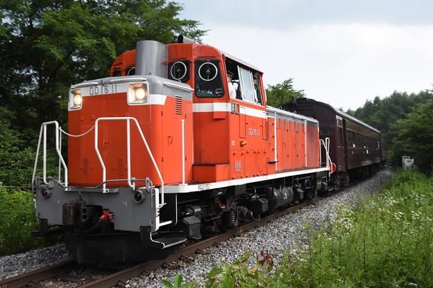 旧型客車八ヶ岳号