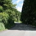 Photos: 山の自転車道