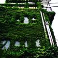 Photos: 上中里 緑のビル