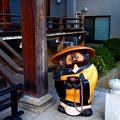 Photos: 浮間 観音寺 本堂 たぬき
