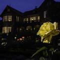 写真: 洋館とバラ