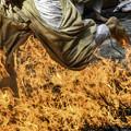 荒行「火渡り」 (2)