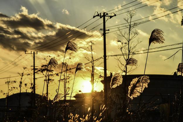 Photos: 工場街の落日
