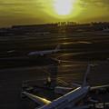 落日「羽田空港」