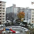 Photos: 15・59DSCF0056