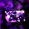 写真: 最近の携帯の・・・