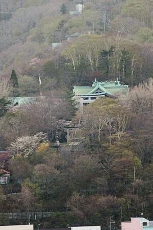 室蘭・入江運動公園にて (11)
