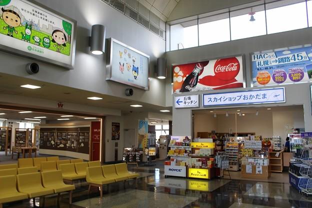 札幌丘珠空港にて(OKADAMA Airport)