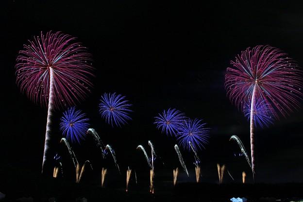 モエレ沼芸術花火2016 GREAT SKY ART 2曲目 (3)