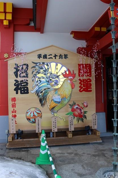 参拝 樽前山神社 (1)