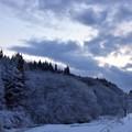Photos: 一晩で雪景色