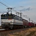 Photos: EF65 2092牽引鹿島貨物1092レ