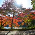 写真: 紅葉の鎌北湖