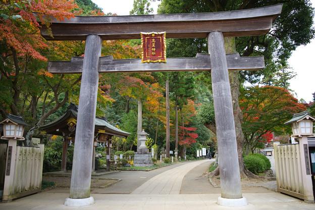 写真: 今度は神社です(w)