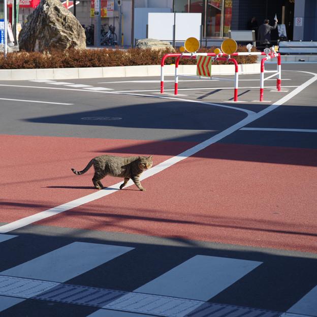 本川越駅前ロータリー