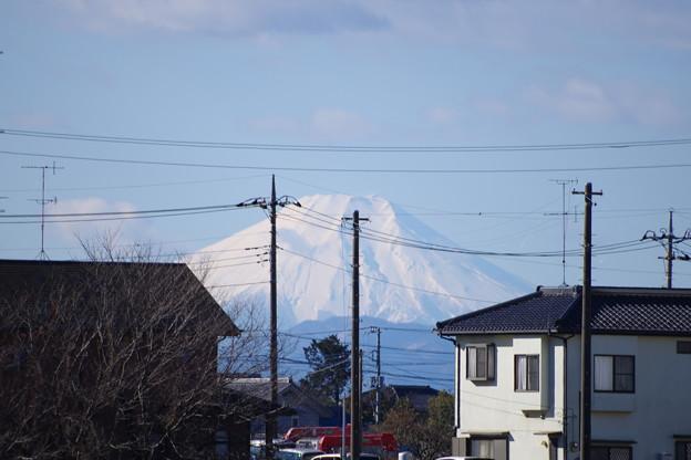 散歩道から見える富士山