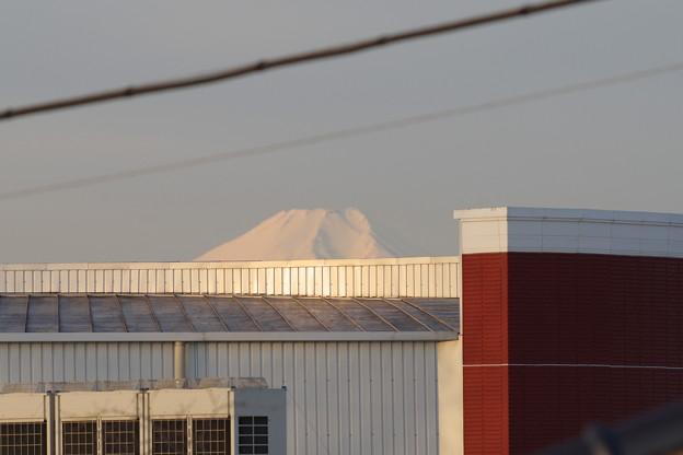 うしちゃんの部屋から見える富士山