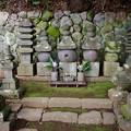 写真: 土肥一族墓所