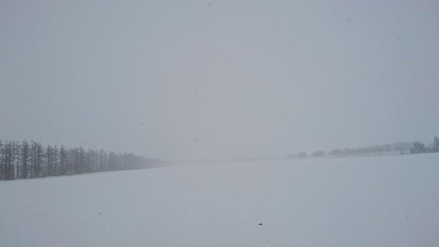 真っ白な風景。