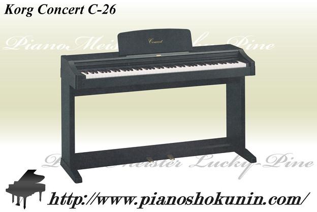 Korg Concert C-26