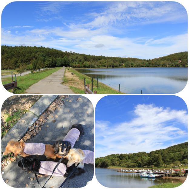 湖畔をお散歩しよう