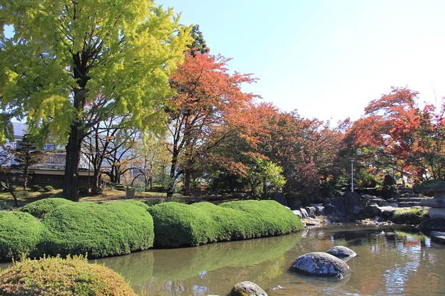 高島公園の庭園
