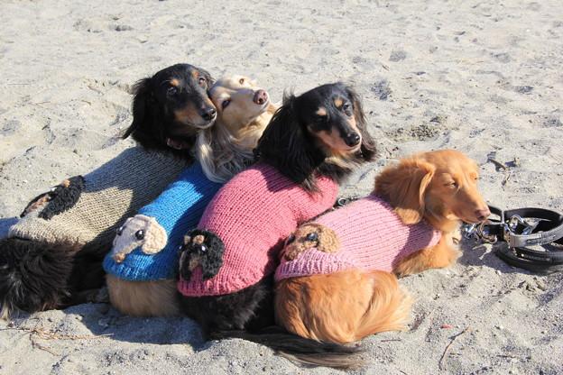 似顔絵ニットで砂浜をお散歩