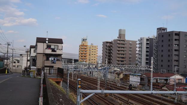 写真: DSC01262