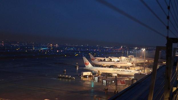 写真: 羽田空港1