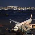 写真: 羽田空港2