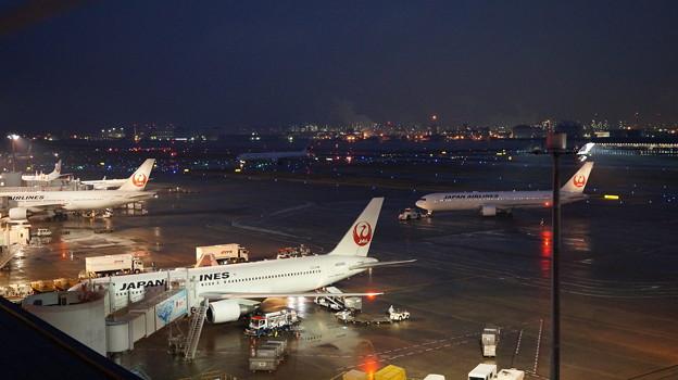写真: 羽田空港4