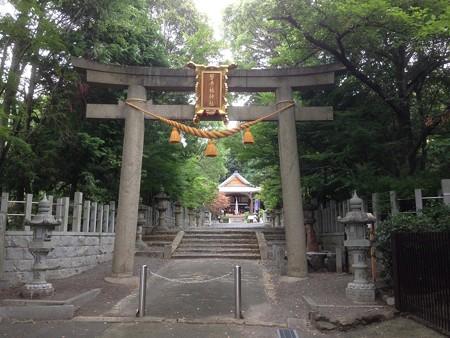 20160725 磐手杜神社