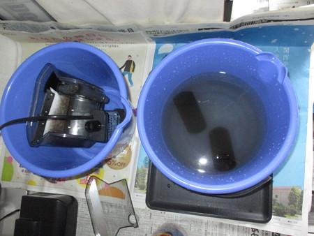 20160809 水槽の掃除と水換え