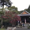 20161102 磐手杜神社