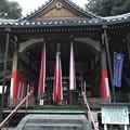 20170106 磐手杜神社