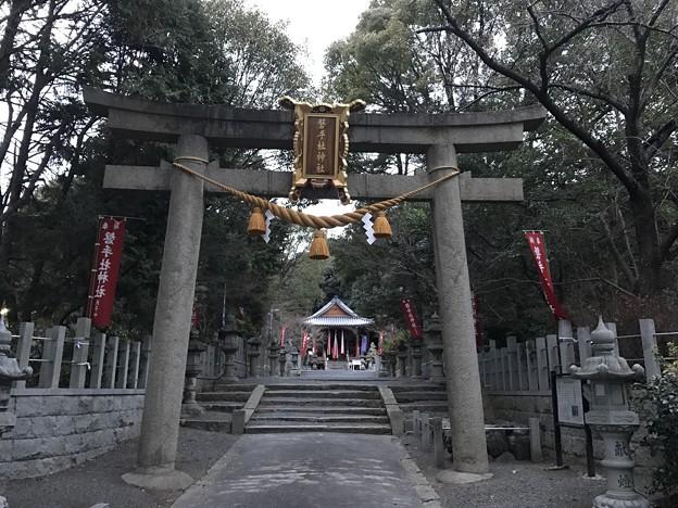 写真: 20170106 磐手杜神社